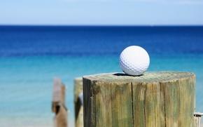 Wallpaper golf ball, golf, club, sea