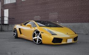 Picture reflection, the building, the door, white, gallardo, lamborghini, drives, side view, yellow, Lamborghini, Gallardo, lp560-4