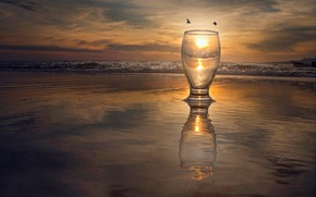 Picture sea, the sun, birds, glass, reflection, surf