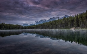 Picture the sky, clouds, trees, mountains, lake, reflection, the evening