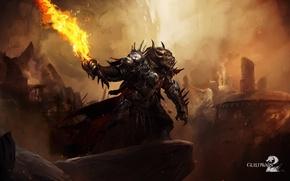 Picture landscape, Fire, Guild Wars2
