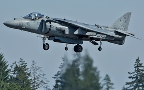 Picture fighter, attack, the rise, AV-8B, Harriers