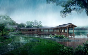 Wallpaper Park, track, rain