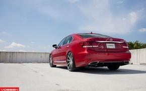 Picture red, vossen, Lexus LS460
