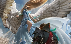 Wallpaper field, girl, tape, wings, angel, feathers, art, male, ears, knight, armor, algae nurse