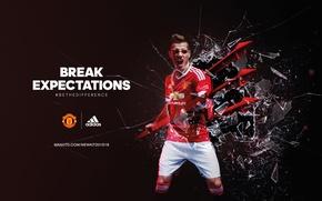 Picture adidas, football, manchester united, trident, red-devils, morgan schneiderlin