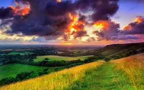 Picture greens, field, the sky, grass, the sun, clouds, trees, landscape, clouds, nature, sunrise, England, morning, …