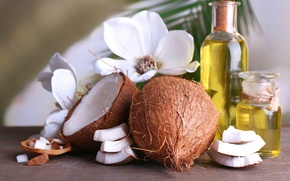 Picture oil, coconut, exotic, aromatherapy