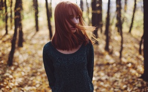 Picture forest, girl, mood, redhead