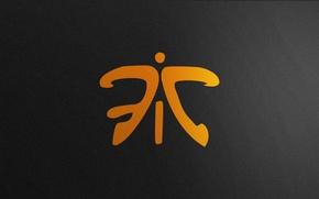 Picture Logo, Game, Team, Minimalism, CSGO, Counter-Strike: Global Offensive, CS:GO, Fnatic, vent designs, Esports