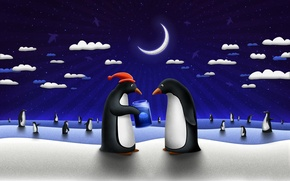 Picture gift, new year, Medusa, Penguins