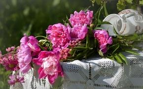Picture vase, pink, peonies