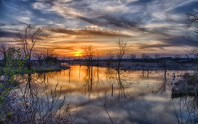 Picture the sun, clouds, trees, sunset, spring, spill