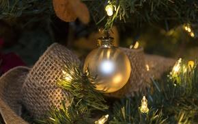Picture ball, garland, light bulb
