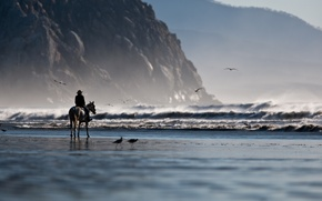 Picture wallpapers, mountains, shore, coast, Wallpaper, sand, sea, tilt shift, wave, rocks, seagulls, tilt shift, nature, ...