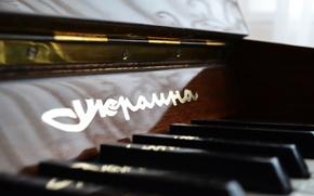 Picture music, piano, Ukraine
