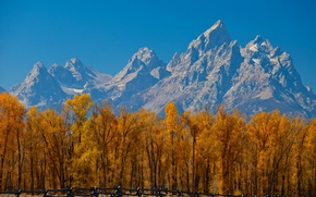 Picture autumn, the sky, leaves, trees, mountains, the fence