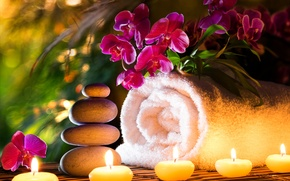 Picture flowers, towel, candles, orchids, Spa stones