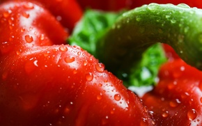 Picture drops, macro, red, pepper, Red, sweet, Peppers