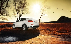 Picture white, the sun, BMW, puddle, SUV, bmw x6, SUV