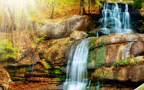 Picture autumn, forest, leaves, trees, Park, stream, stones, waterfall, the rays of the sun