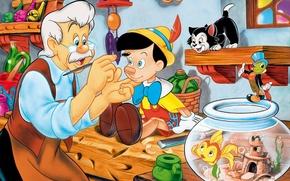 Picture kitty, aquarium, fish, glasses, brush, cricket, Pinocchio, carpenter Antonio, cherry master
