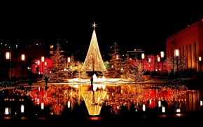 Wallpaper reflection, night, tree, area, the city, lights, garland, water