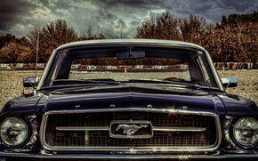 Picture car, mustang, light, ford, sky, cloud, front, old, classic, american, face, eye, portrait, classiccar