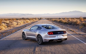 Picture Mustang, Ford, horizon, Ford, Mustang, rear view, Muscle car, Muscle car
