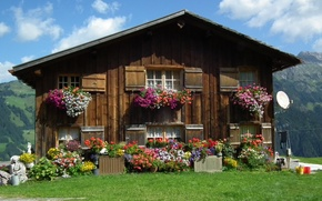 Picture house, Austria, flowers, pots, Austria, Vorarlberg, Vorarlberg