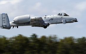 Picture attack, American, A-10, Fairchild, Thunderbolt II, Republic, single, armored, twin-engine