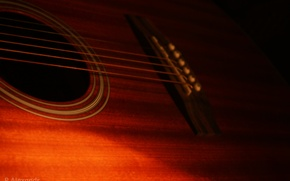 Picture macro, strings, Guitar, Grif, frets, musical instrument