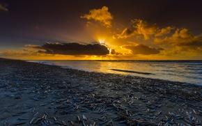 Picture sunset, coast, Netherlands, Holland, North Sea, Noordwijk
