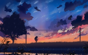Picture the sky, girl, clouds, sunset, nature, wire, anime, art, guy, two, dias mardianto, donsaid