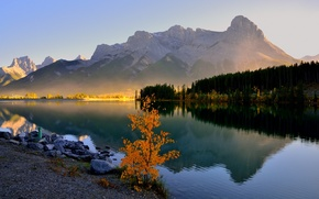 Picture forest, trees, mountains, lake, morning, haze, Canada, Banff, Canmore, Grassi Lake