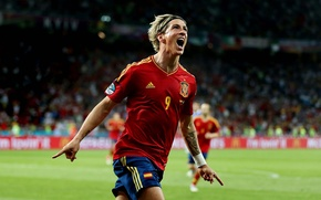 Picture football, Euro, 2012, Spain, Torres