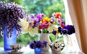 Picture kettle, Cup, tulips, Jasmine, violet