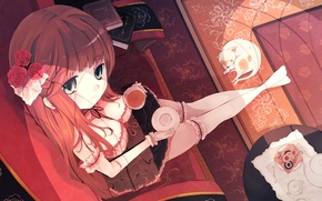Picture cat, girl, the evening, anime, art