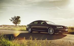 Picture glare, Audi, Audi, Vossen Wheels, Ciprian Mihai