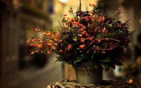 Picture leaves, flowers, bouquet, blur