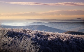 Picture frost, forest, hills, morning, valley