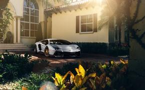 Picture Lamborghini, Front, Sun, White, Matte, Tuning, LP700-4, Aventador, Supercar, Wheels, ADV.1