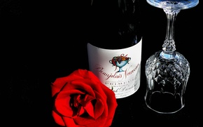 Picture flower, wine, glass, rose, bottle, still life, Beaujolais