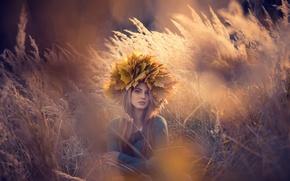 Picture Russia, Golden autumn, autumn portrait