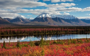 Picture autumn, the sky, clouds, mountains, Alaska, USA, forest
