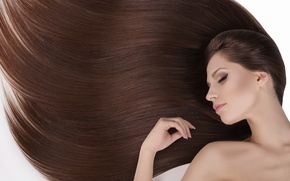 Picture girl, makeup, girl, brown hair, long hair, brown hair, makeup, long hair