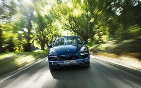Picture forest, speed, Porsche Cayenne