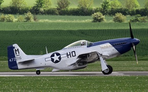 Picture Mustang, fighter, P-51D, single