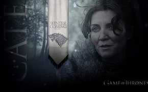 Picture sword, Game of thrones, the game of thrones, Catelyn Stark, the severity