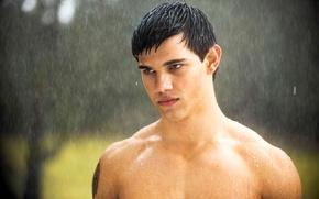 Picture twilight, new moon, Jacob, Taylor Lautner